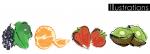 4 ilustracije voća