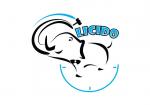 Logo za novi aukcijski sajt