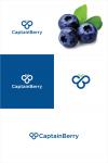 Logo za firmu koja se bavi proizvodnjom i trgovinom borovnica