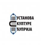 Лого Установе културе